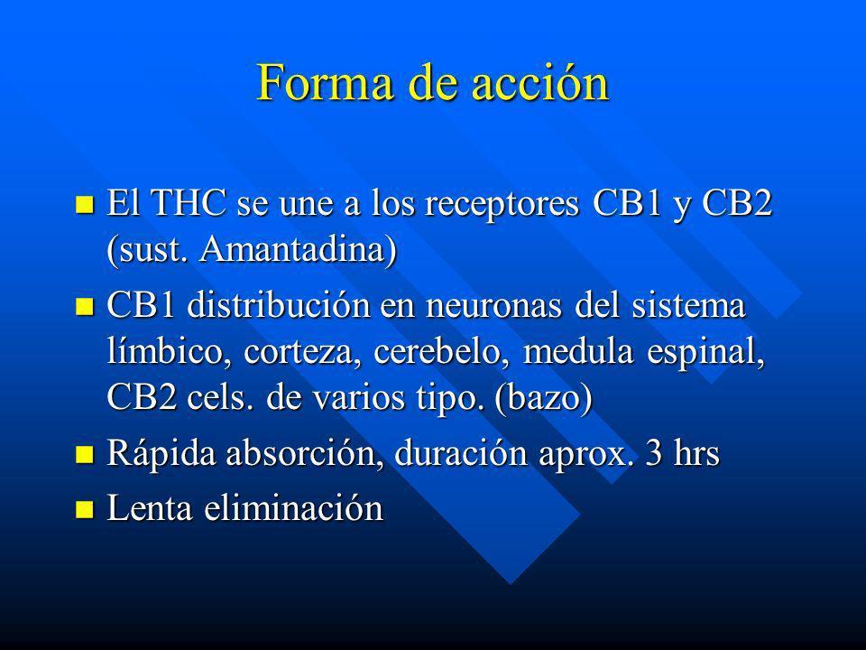 Forma de acción El THC se une a los receptores CB1 y CB2 (sust. Amantadina)