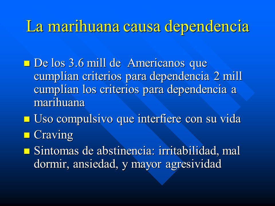 La marihuana causa dependencia