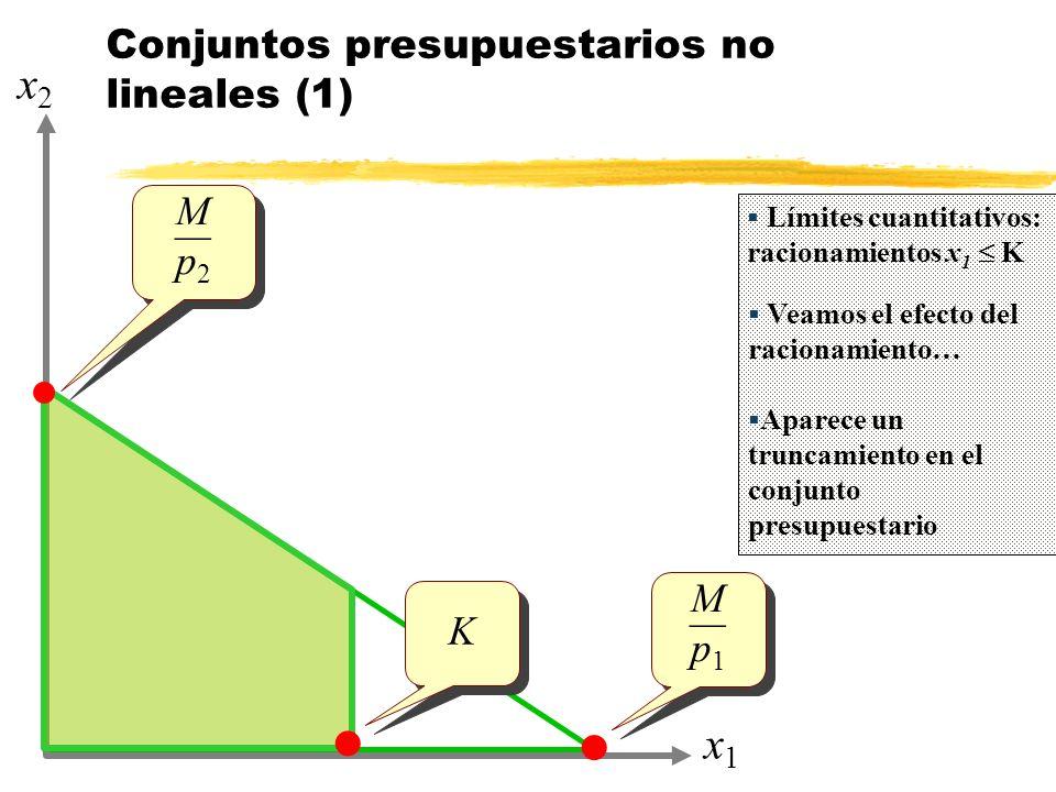 Conjuntos presupuestarios no lineales (1)