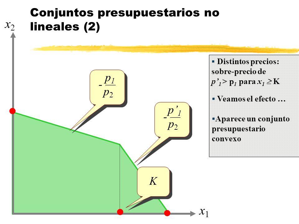 Conjuntos presupuestarios no lineales (2)