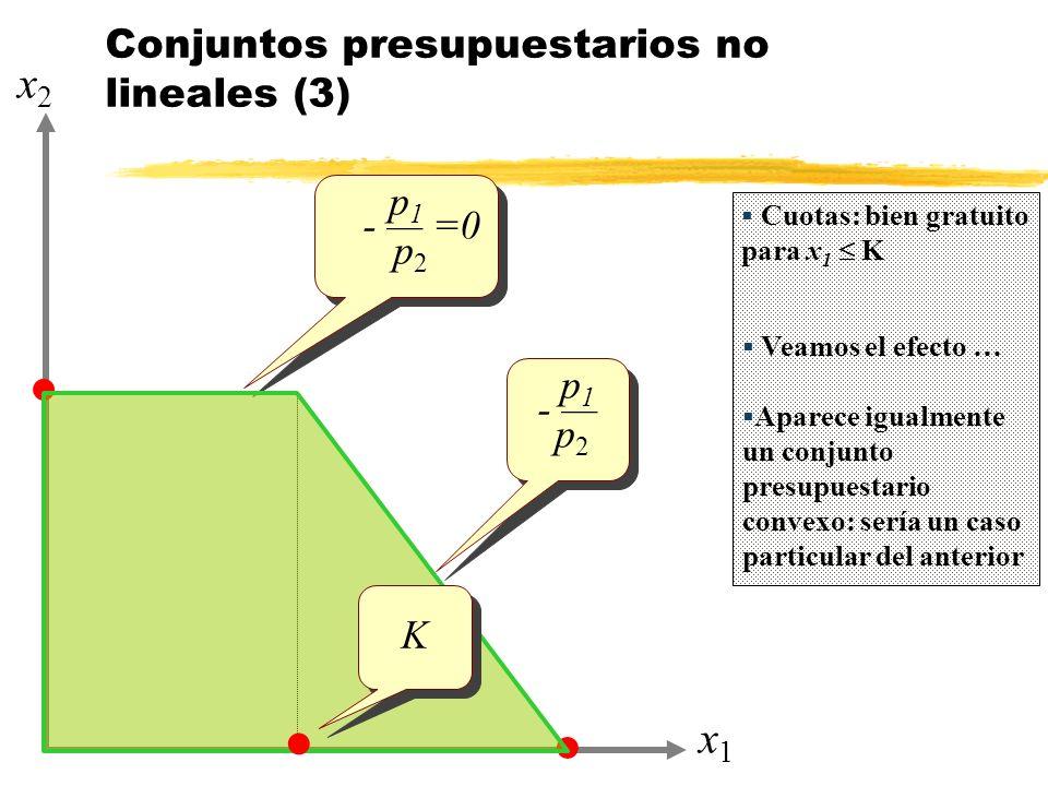 Conjuntos presupuestarios no lineales (3)