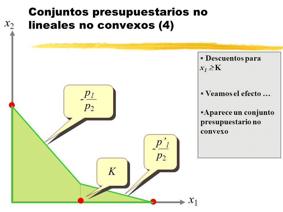 Conjuntos presupuestarios no lineales no convexos (4)