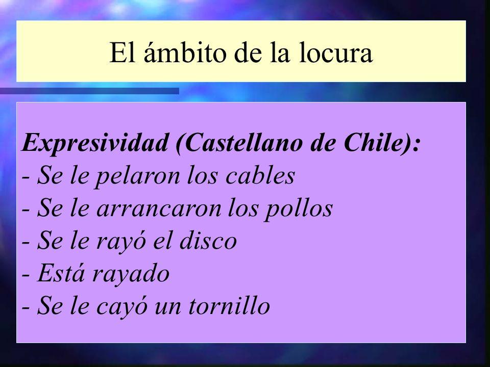 El ámbito de la locura Expresividad (Castellano de Chile):