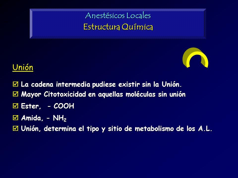 Estructura Química Anestésicos Locales Unión