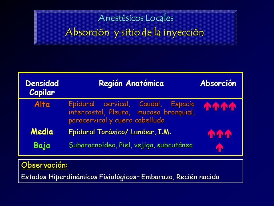 Absorción y sitio de la inyección