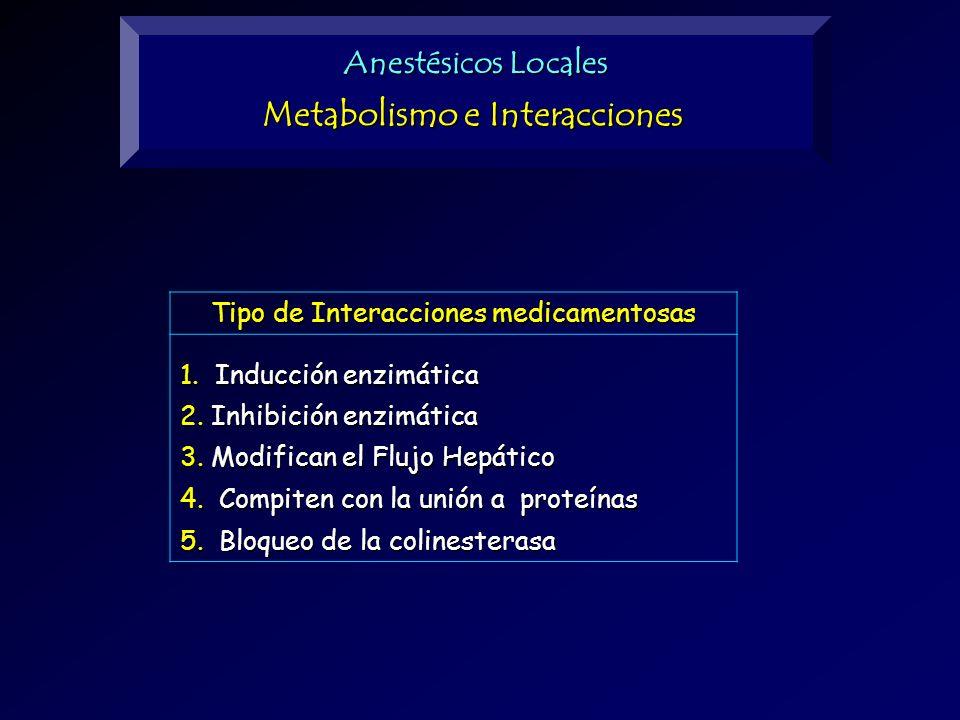 Metabolismo e Interacciones