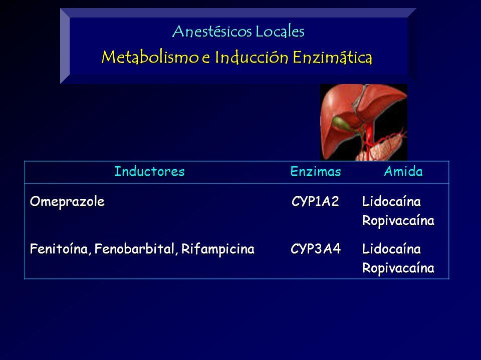 Metabolismo e Inducción Enzimática