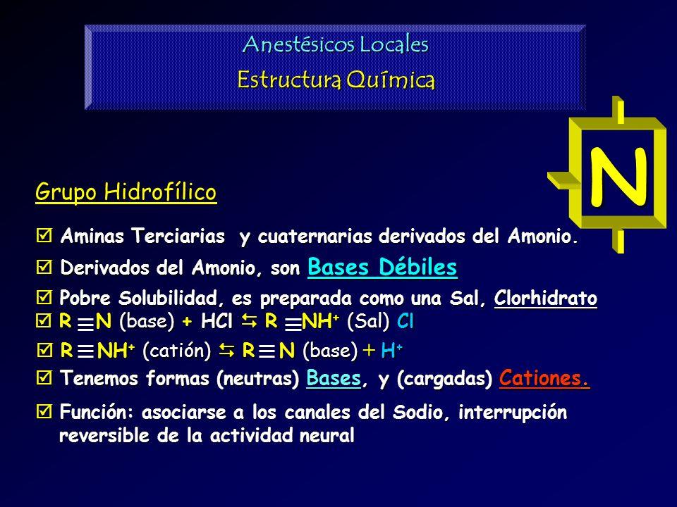 N Estructura Química Anestésicos Locales Grupo Hidrofílico