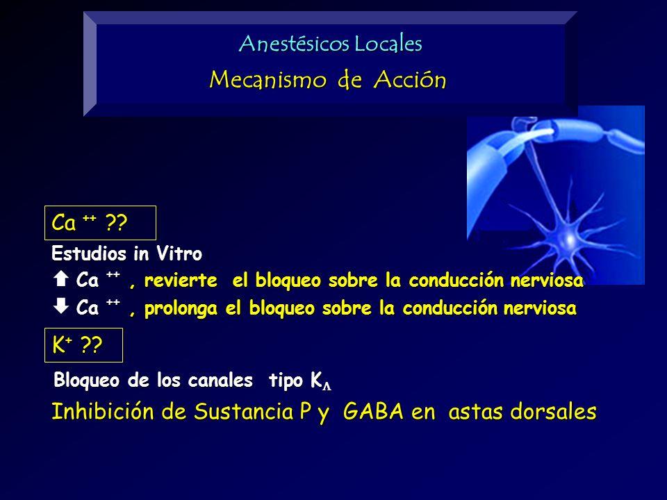 Mecanismo de Acción Anestésicos Locales Ca ++