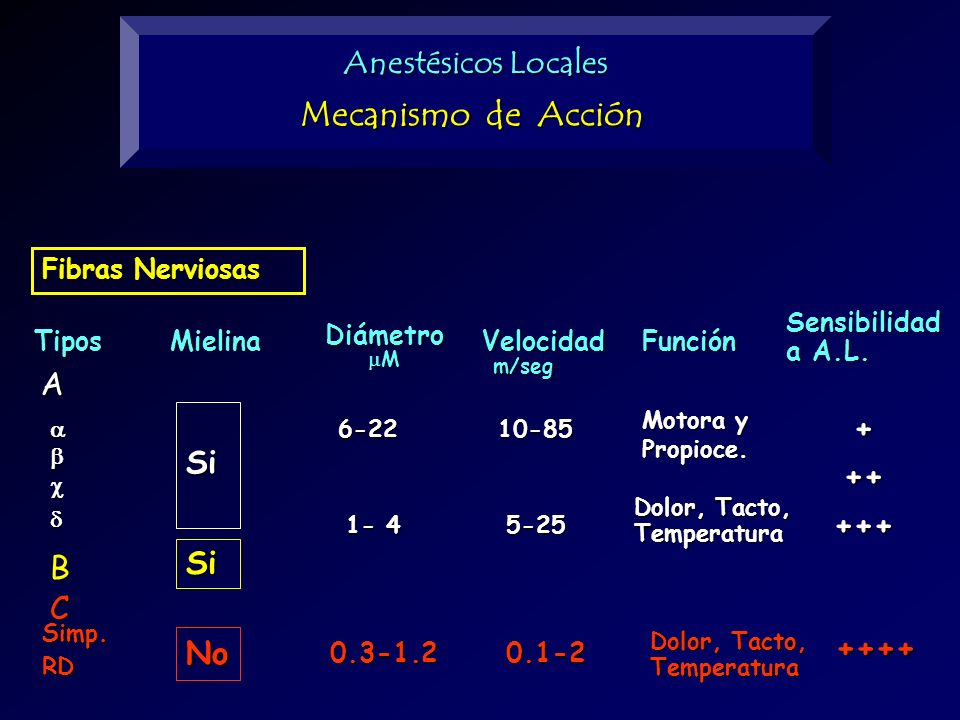 Mecanismo de Acción Anestésicos Locales A + Si ++ +++ Si B C No ++++
