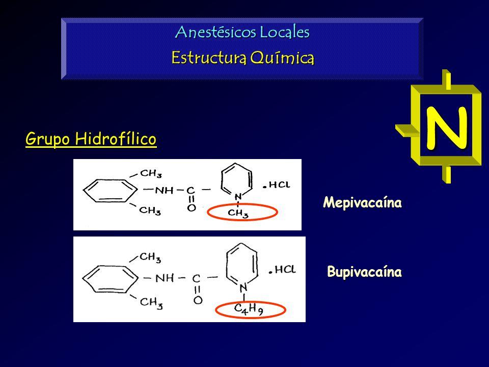 N N Estructura Química Anestésicos Locales Grupo Hidrofílico