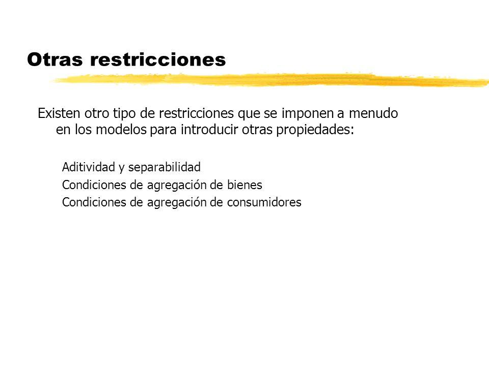 Otras restricciones Existen otro tipo de restricciones que se imponen a menudo en los modelos para introducir otras propiedades: