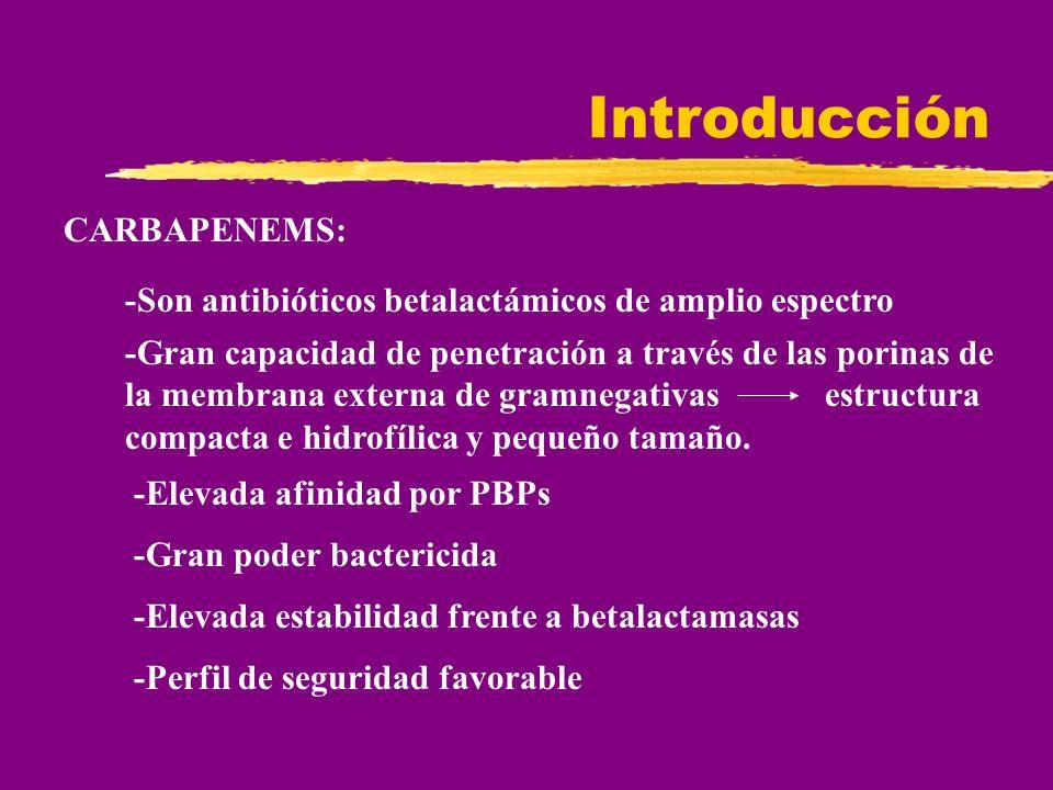 Introducción CARBAPENEMS: