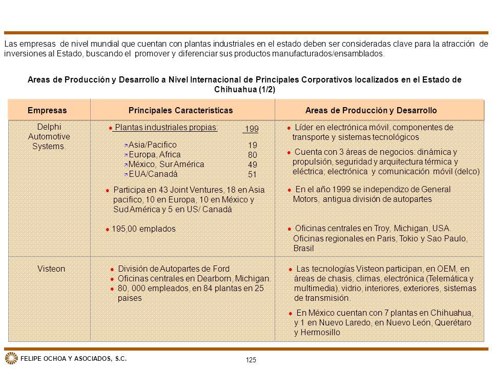 Principales Características Areas de Producción y Desarrollo