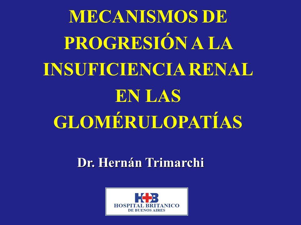 MECANISMOS DE PROGRESIÓN A LA INSUFICIENCIA RENAL EN LAS GLOMÉRULOPATÍAS