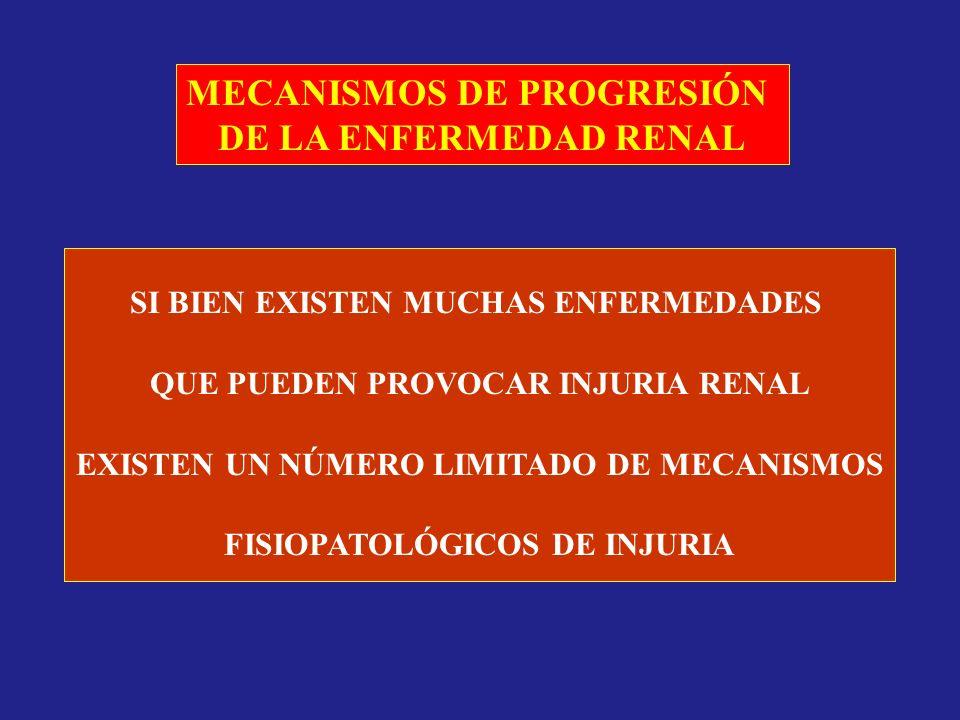 MECANISMOS DE PROGRESIÓN DE LA ENFERMEDAD RENAL
