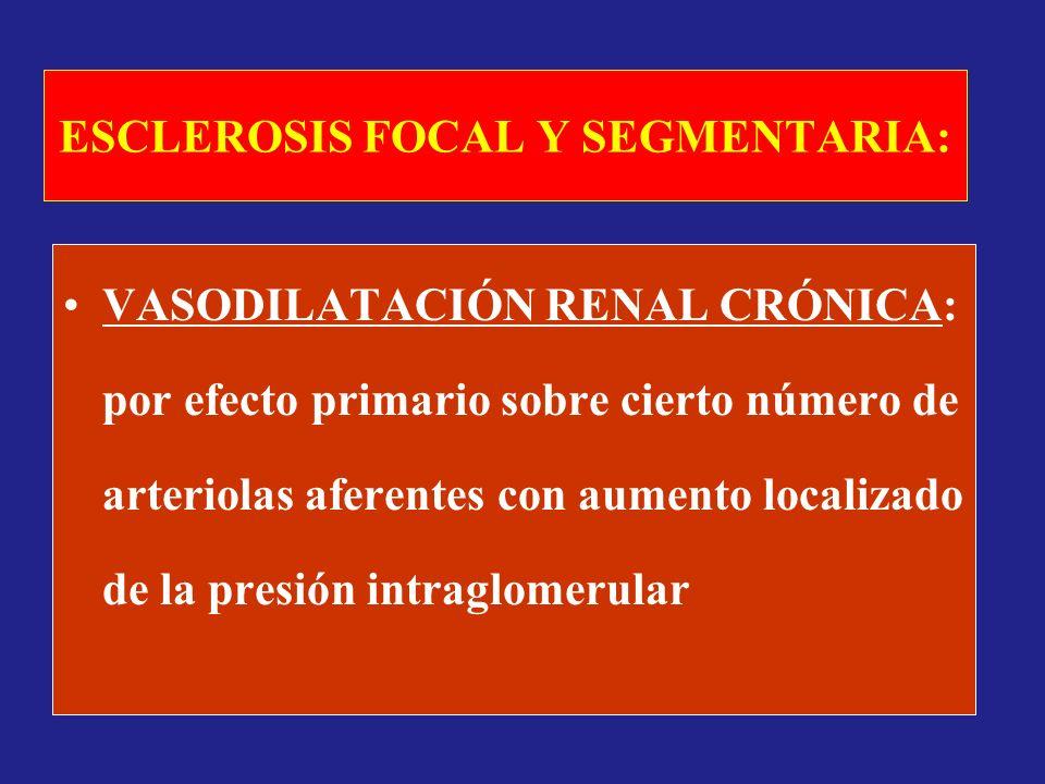ESCLEROSIS FOCAL Y SEGMENTARIA: