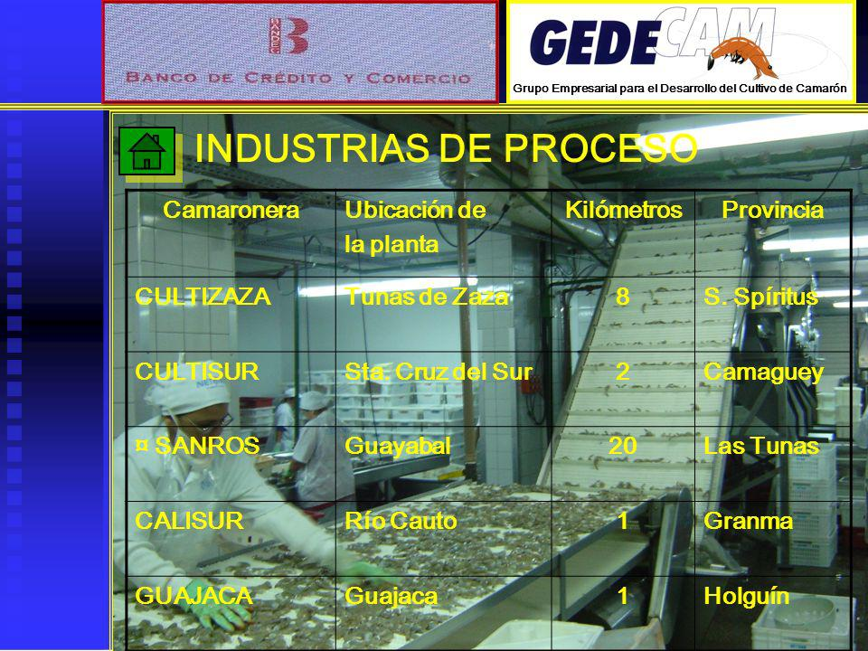 INDUSTRIAS DE PROCESO Camaronera Ubicación de la planta Kilómetros
