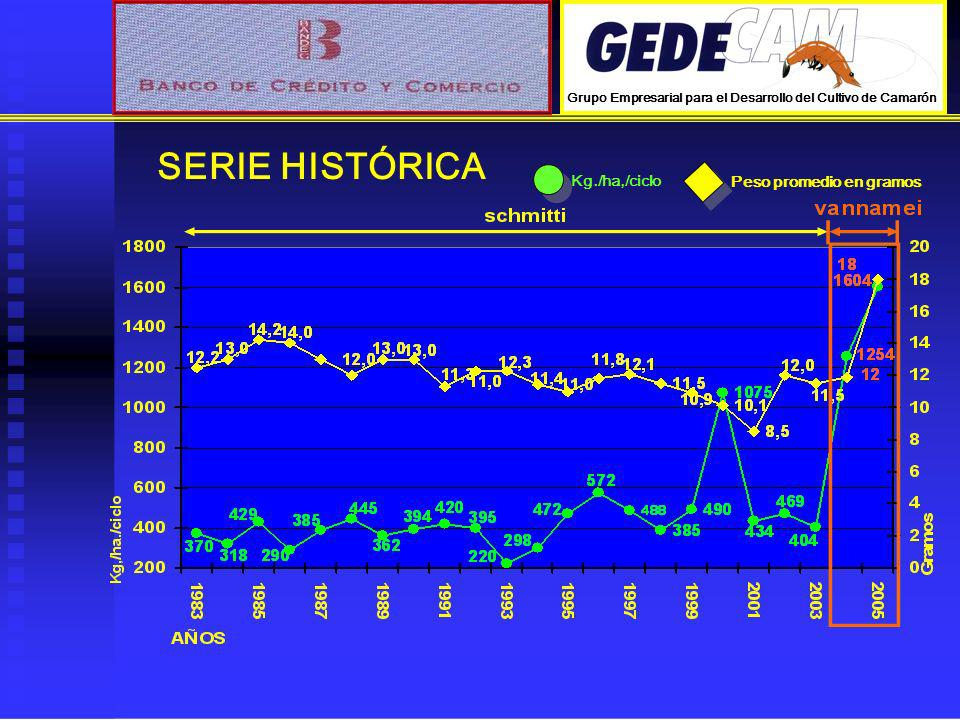 SERIE HISTÓRICA Kg./ha,/ciclo Peso promedio en gramos