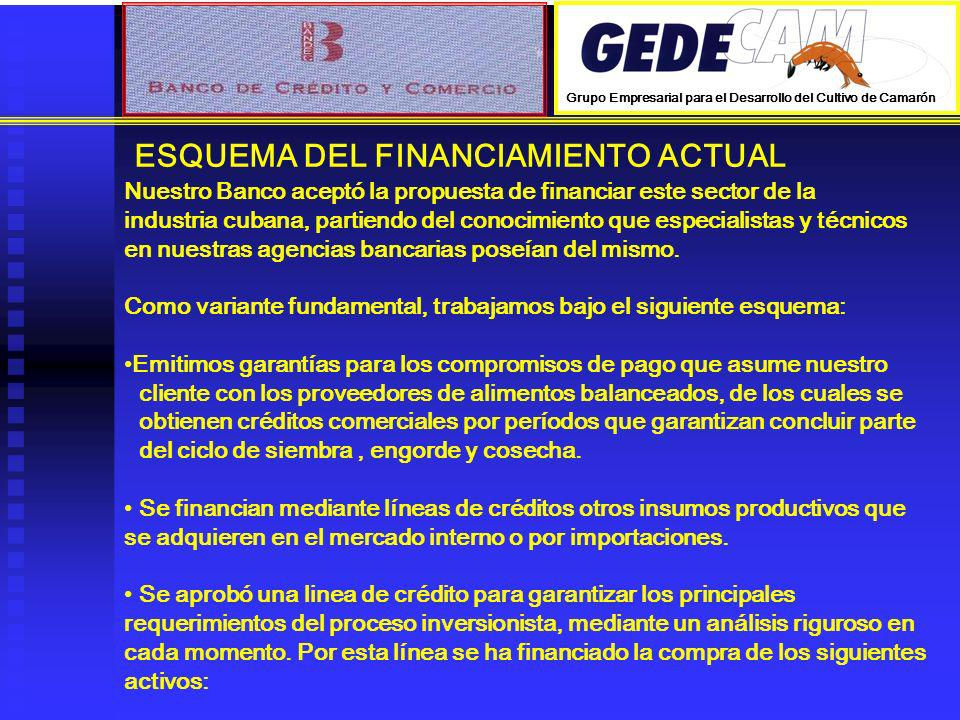 ESQUEMA DEL FINANCIAMIENTO ACTUAL