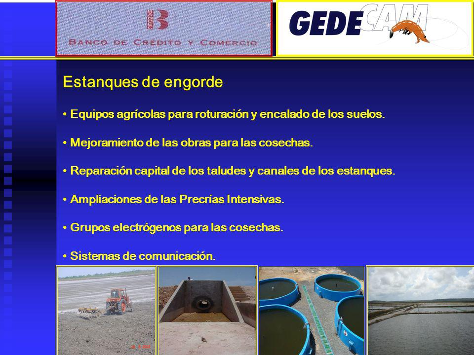 Estanques de engorde Equipos agrícolas para roturación y encalado de los suelos. Mejoramiento de las obras para las cosechas.