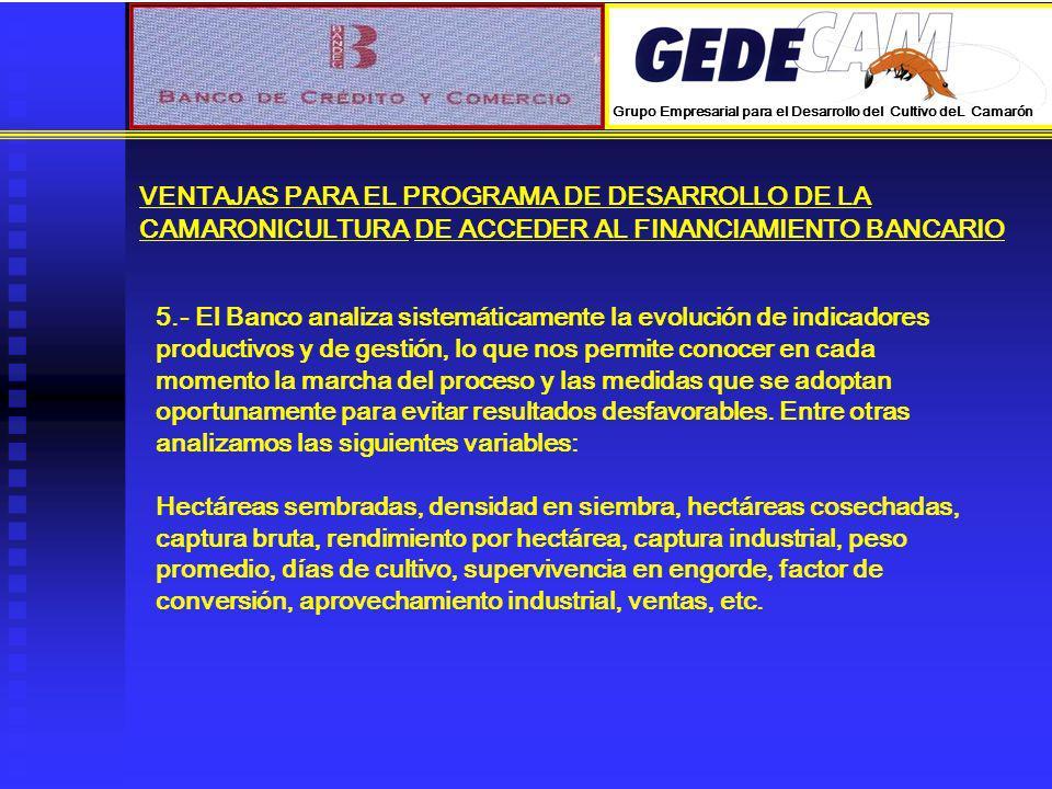 VENTAJAS PARA EL PROGRAMA DE DESARROLLO DE LA