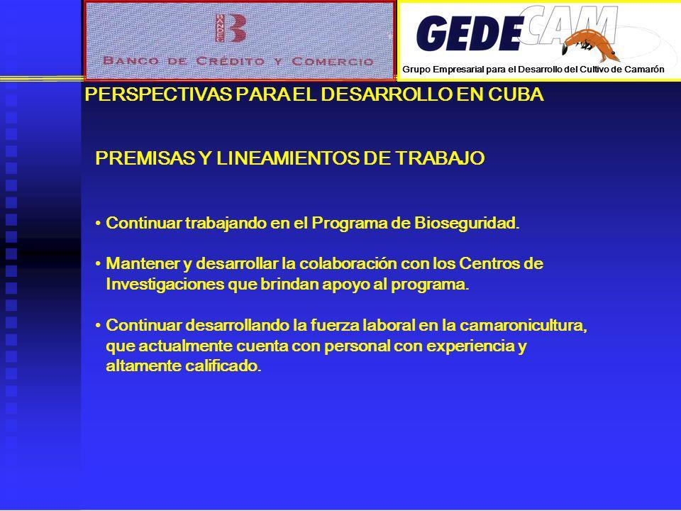 PERSPECTIVAS PARA EL DESARROLLO EN CUBA