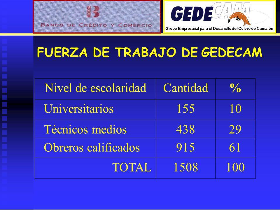 FUERZA DE TRABAJO DE GEDECAM Nivel de escolaridad Cantidad %