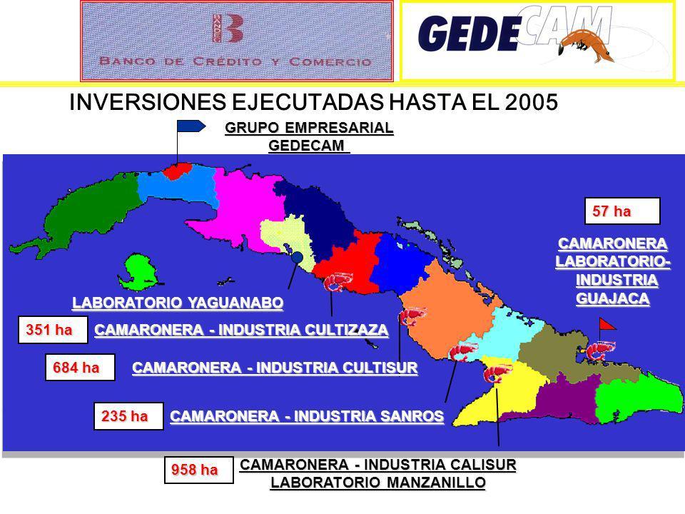 INVERSIONES EJECUTADAS HASTA EL 2005