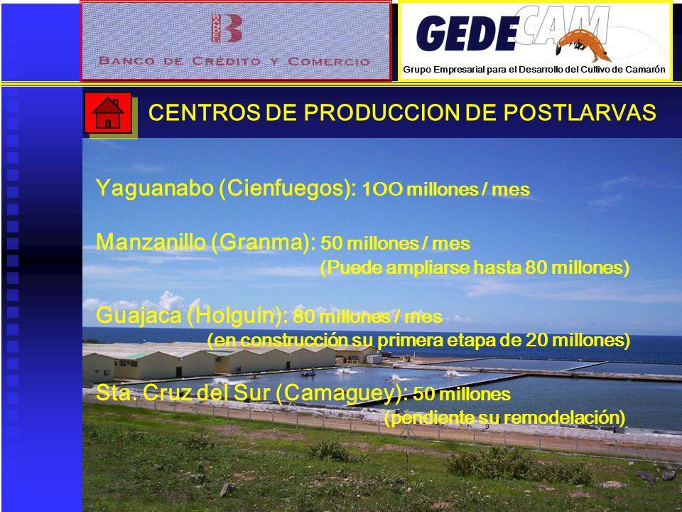 CENTROS DE PRODUCCION DE POSTLARVAS