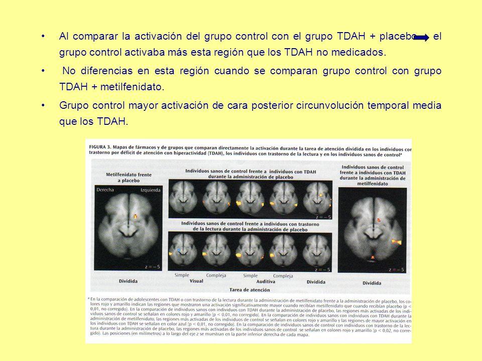 Al comparar la activación del grupo control con el grupo TDAH + placebo el grupo control activaba más esta región que los TDAH no medicados.