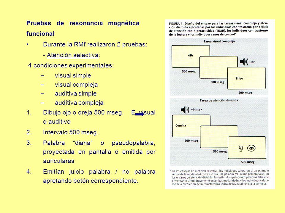 Pruebas de resonancia magnética