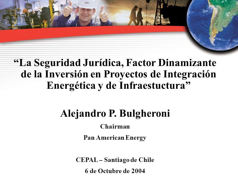 Alejandro P. Bulgheroni CEPAL – Santiago de Chile