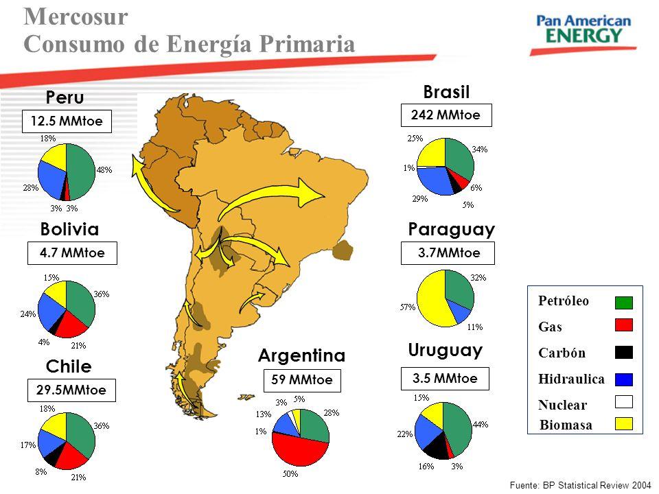 Mercosur Consumo de Energía Primaria