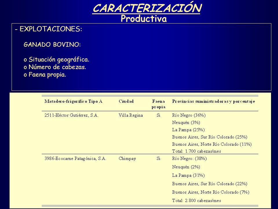 CARACTERIZACIÓN Productiva - EXPLOTACIONES: GANADO BOVINO: