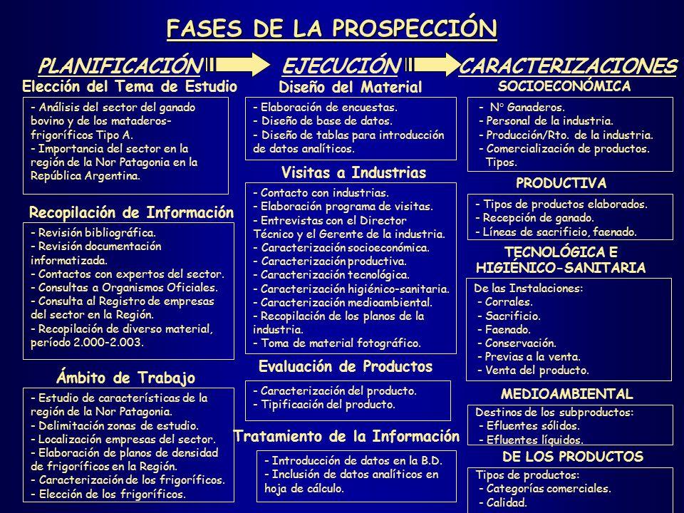 FASES DE LA PROSPECCIÓN