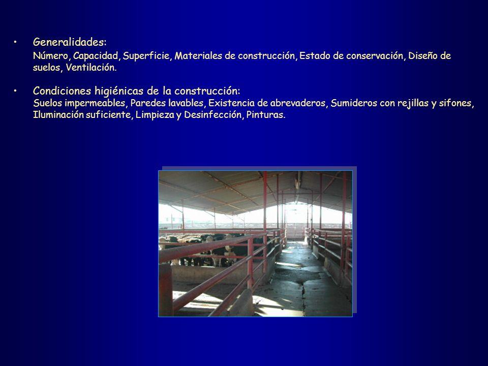 Condiciones higiénicas de la construcción: