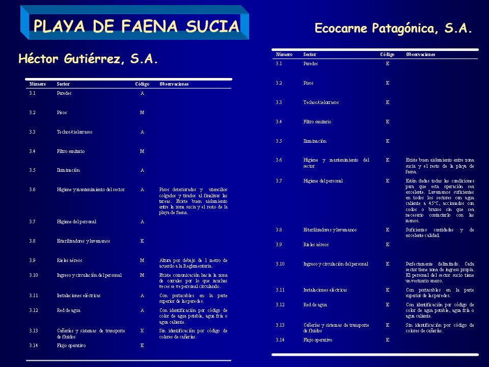 PLAYA DE FAENA SUCIA Ecocarne Patagónica, S.A. Héctor Gutiérrez, S.A.
