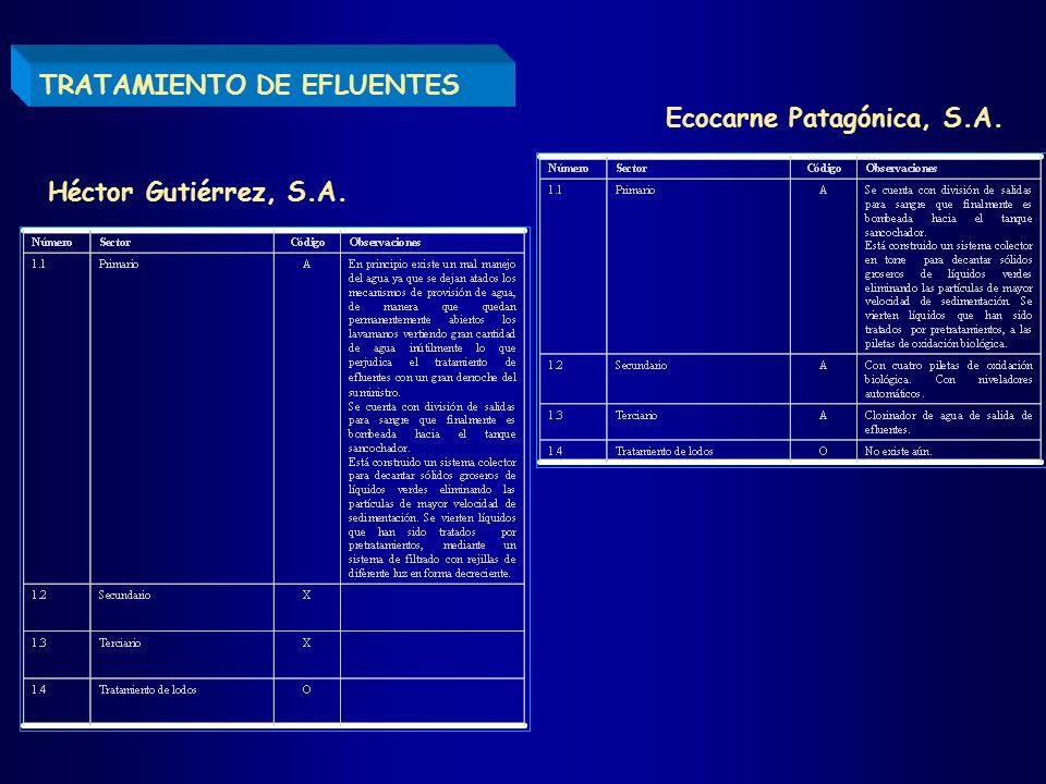 TRATAMIENTO DE EFLUENTES