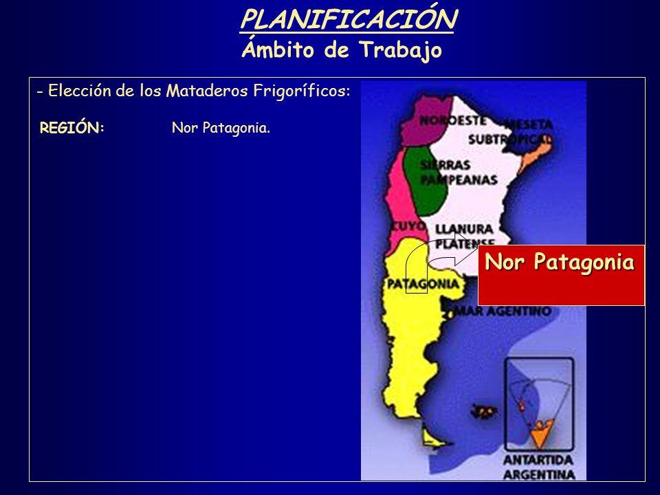 PLANIFICACIÓN Ámbito de Trabajo Nor Patagonia