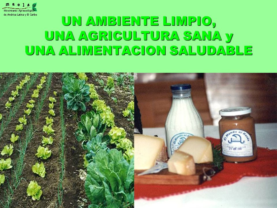 UN AMBIENTE LIMPIO, UNA AGRICULTURA SANA y UNA ALIMENTACION SALUDABLE