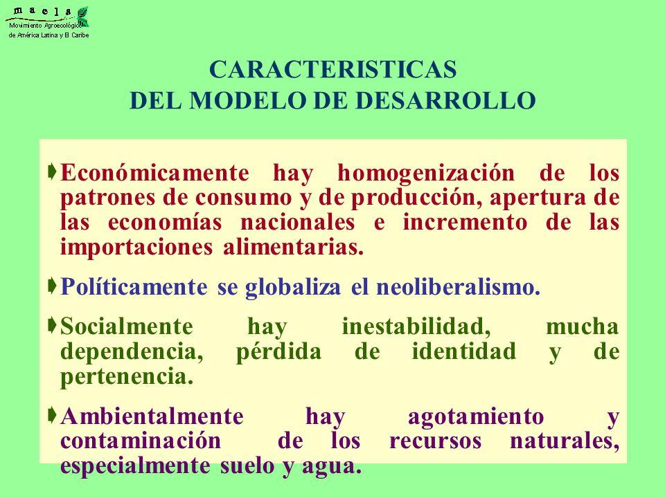 CARACTERISTICAS DEL MODELO DE DESARROLLO