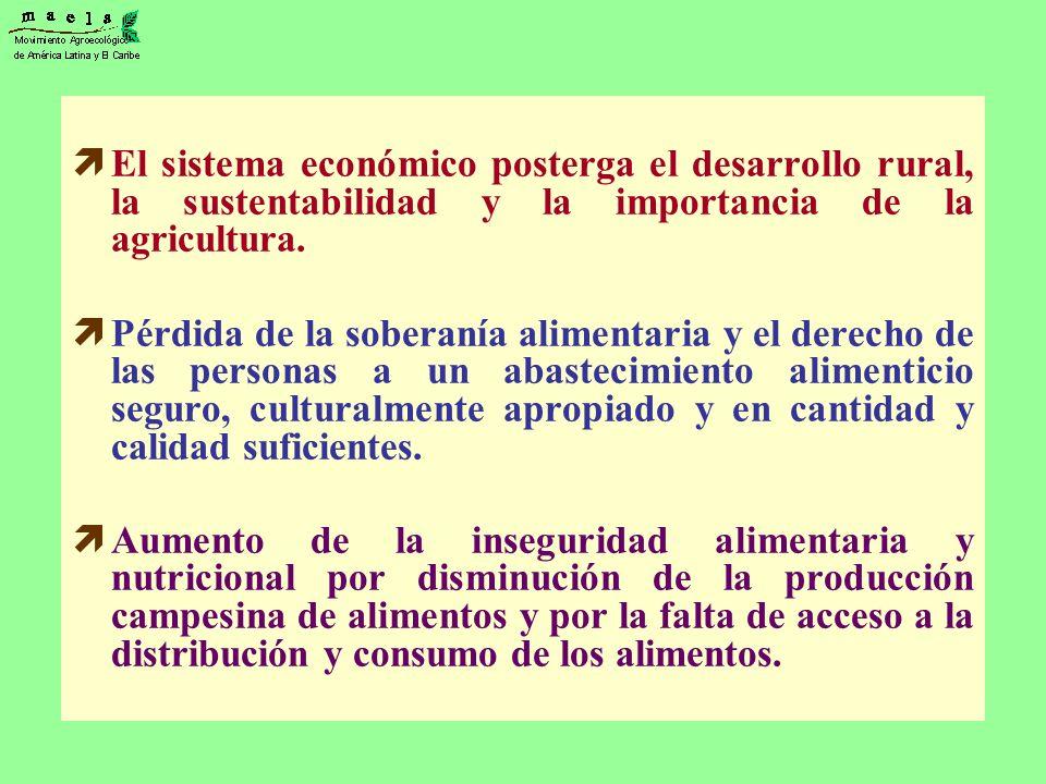 El sistema económico posterga el desarrollo rural, la sustentabilidad y la importancia de la agricultura.