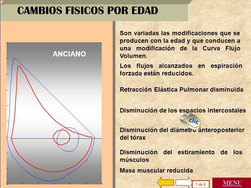 CAMBIOS FISICOS POR EDAD