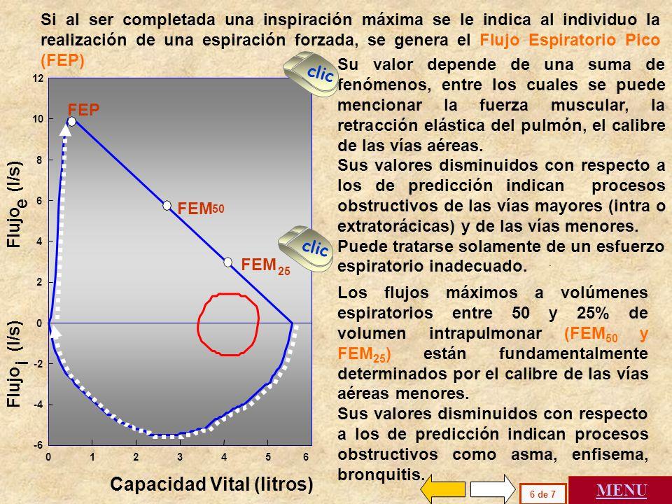 . Capacidad Vital (litros) e Flujo (l/s) i