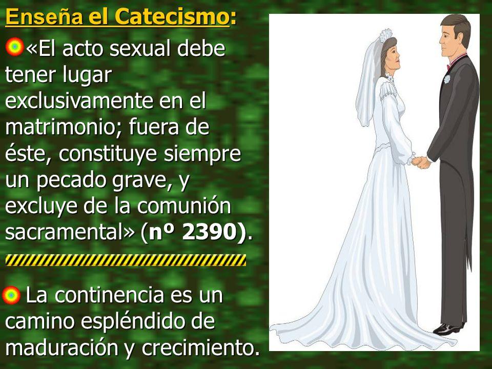Enseña el Catecismo: