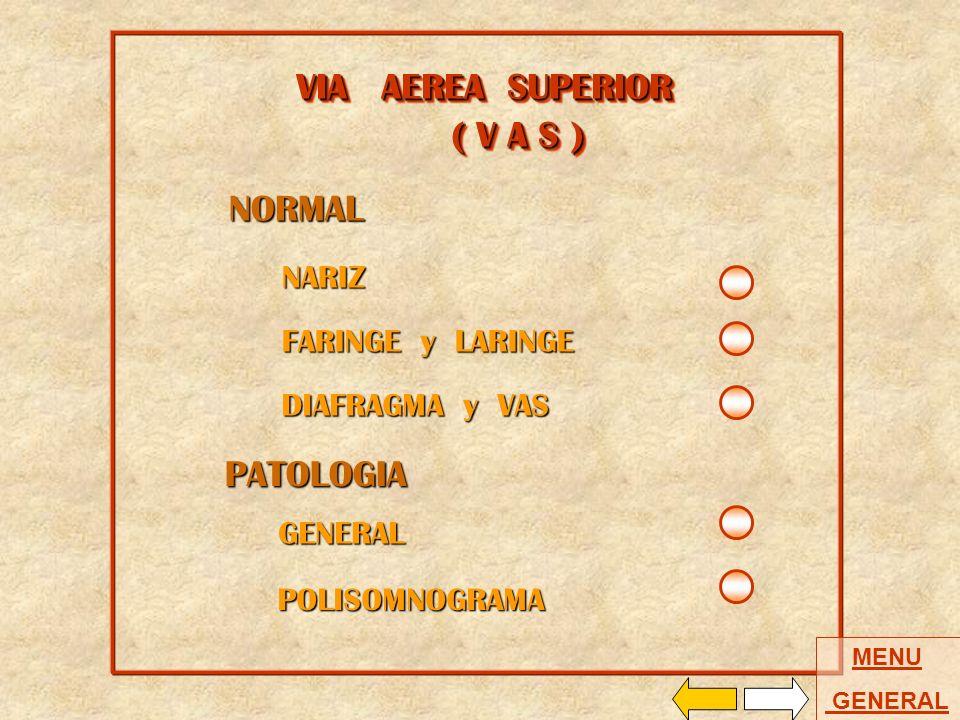 VIA AEREA SUPERIOR ( V A S ) NORMAL PATOLOGIA NARIZ FARINGE y LARINGE