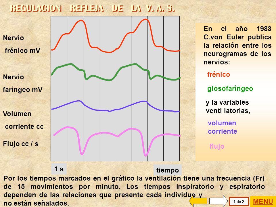 REGULACION REFLEJA DE LA V. A. S.
