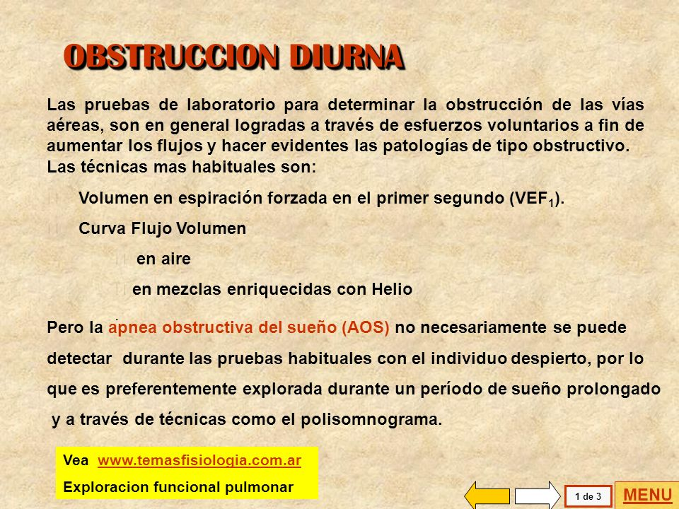 OBSTRUCCION DIURNA