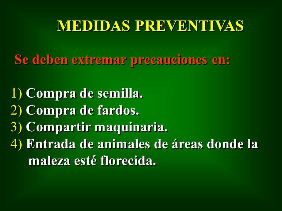 MEDIDAS PREVENTIVAS 1) Compra de semilla. 2) Compra de fardos.
